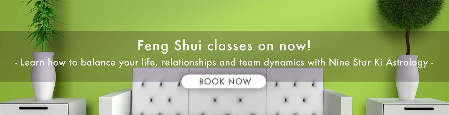 Professional feng shui training at our school